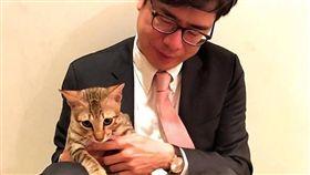 陳其邁的貓  陳小米(圖/翻攝自陳其邁 Chen Chi-Mai臉書粉絲專頁)
