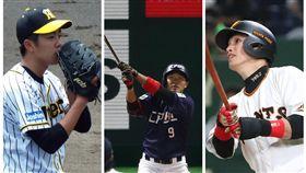 ▲火腿、巨人、阪神日職賽事,明年台灣球迷看得到。(圖/翻攝自推特)