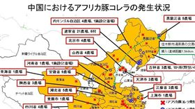 日本繪製「中國非洲豬瘟疫情發生狀況圖」。(圖/翻攝自日本農林水產省官網)