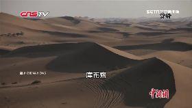 文 沙漠變綠洲2000