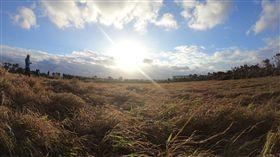 元旦墾丁龍磐草原  迎曙光(2)台灣只有墾丁龍磐草原可以看到環太平洋的第一道曙光。圖為去年龍磐公園迎曙光。(屏東縣政府提供)中央社記者郭芷瑄傳真  107年12月13日