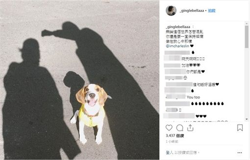 現年27歲的男星林柏叡,與王淨2人因為合作電影《鬥魚》電影版的男女主角而擦出火花(圖/王淨ig)