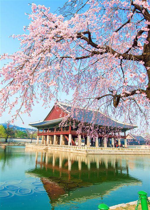 韓國,遊輪。