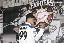 台灣強打王柏融與日本職棒火腿隊簽約並穿上背號99新球衣。(記者林士傑/攝影)