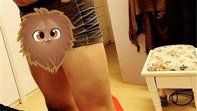 男生都有一條這樣的內褲?網笑:這叫重感情(圖/翻攝自爆怨公社臉書)