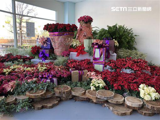 花博耶誕元旦活動(台中市政府)