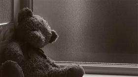 熊寶寶、熊娃娃 圖翻攝自pixabay