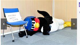 燕九郎躺在地上打滾。(圖/翻攝自DailySports)