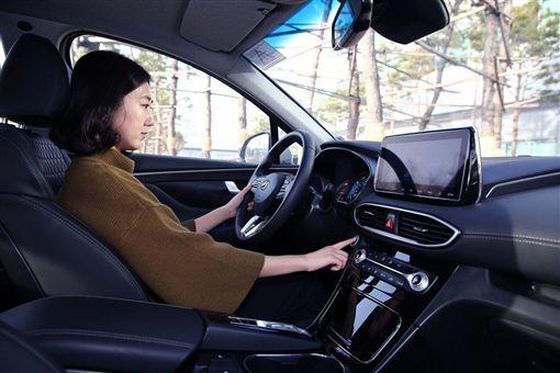 Hyundai Santa Fe(圖/翻攝網路)