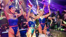 台中西屯區的夜店ALTA Nightclub/ALTA Nightclub授權提供