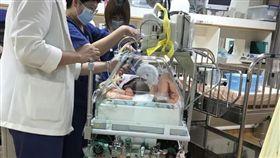 花蓮,新生兒,送醫,紅斑馬