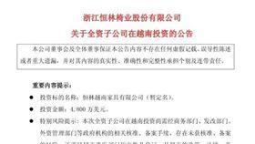 圖說:大同越南子公司賣給陸資,上海證交所已公告  照片提供:翻拍上海證交所網站