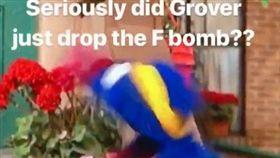 芝麻街,兒童,節目,髒話,Grover,Rosita,對話 圖/翻攝自推特