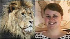 保育中心女員工布萊克遭獅子攻擊身亡。(圖/翻攝LinkedIn、pixabay)