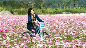 暖冬遊之花蓮。記者唐家興攝影