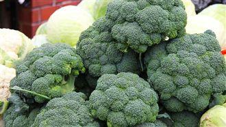 癌細胞超怕它們!六大超強明星蔬果