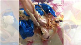 豬腸,蛔蟲,麵線,雞絲麵,內臟(圖/翻攝自爆怨公社)