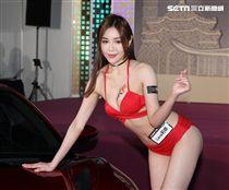 性感火辣車模莉娜。(記者邱榮吉/攝影)