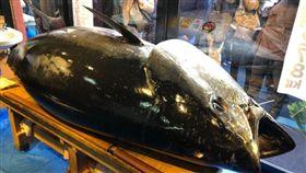 日本東京豐洲市場今(5)日黑鮪魚競標,拍出3億3360萬日圓(約新台幣9660萬元)新高紀錄。這是世界知名的築地市場去年10月熄燈遷址此地後,豐洲市場首度舉辦新年黑鮪魚競標。(圖/翻攝自@zanmai_man推特)