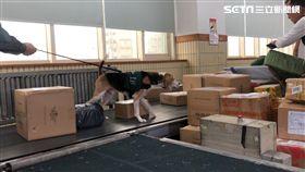 檢疫犬,包裹,防疫犬,中華郵政,/記者蕭筠攝影