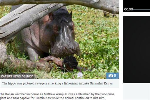肯亞,漁民,河馬,撕咬,攝影師,恐怖https://www.thesun.co.uk/news/8136552/hippo-ambushes-fisherman-kenya-savages-ten-minutes/