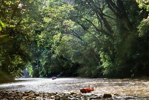 ▲水上森林紅林灣(圖/馬來西亞觀光局)