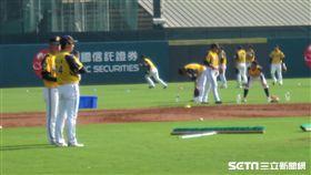 ▲中信兄弟新人野手練習,二軍總教練林威助一旁觀察。(圖/記者蕭保祥攝影)