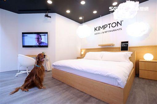 IHG英國洲際酒店集團,金普頓酒店,Kimpton Hotels,金普頓,快閃,王陽明