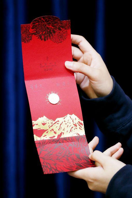 總統府公布豬年福袋(2)總統府14日公布豬年春聯、紅包袋及福袋樣式,並說明以豬為圖案造型主題的福袋設計理念。中央社記者吳翊寧攝 108年1月14日