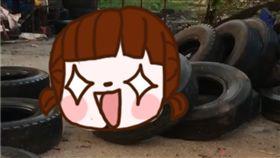 泰國,野豬,啪啪,性愛,輪胎,老婆,發軟,母豬,豬哥, 圖/翻攝自臉書