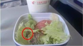 加料不加價?飛機餐沙拉驚見「蠕動蝸牛」 網笑:法國大餐 圖/翻攝微博