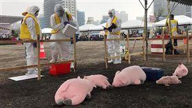桃園市進行非洲豬瘟緊急防疫模擬演習