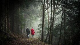 英國,活春宮,森林,受孕儀式 (圖/翻攝自Pixabay)