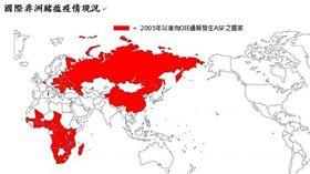 國際非洲豬瘟疫情。(翻攝自/行政院農委會動植物防疫檢疫局)
