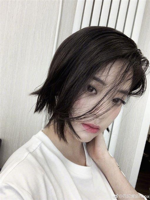 歐陽娜娜,短髮,叛逆/翻攝自歐陽娜娜微博