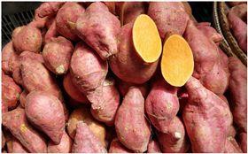飯前,飯後,地瓜,減肥,番薯(圖/翻攝自PIXABAY)