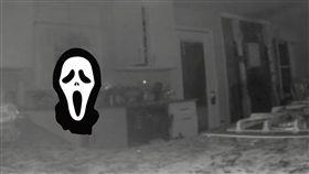 鬼魂,吸毒,澳洲,監視器,單親,喜極而泣,戒毒, 圖/翻攝自推特