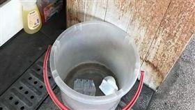 水桶,通信行,護墊,垃圾,正妹,台南,亂丟 (圖/翻攝自爆料公社)