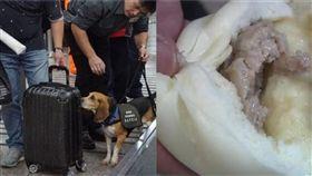 (合成照/左翻攝自中央社、右資料照)包子,防疫犬,入境