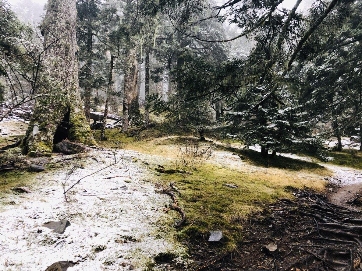 雪山今年第一場初雪。