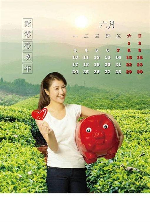 許淑華2019月曆