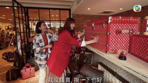 吳若希。(圖/翻攝自TVB東京血拼攻略影片)