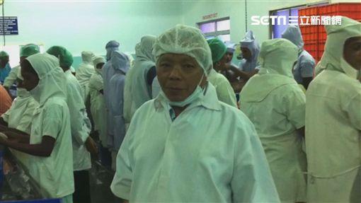 楊老先生巡視工廠加工狀況