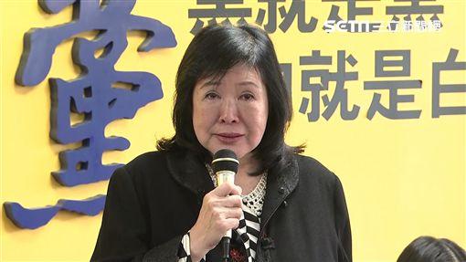 鄭惠中新黨記者會,新聞台
