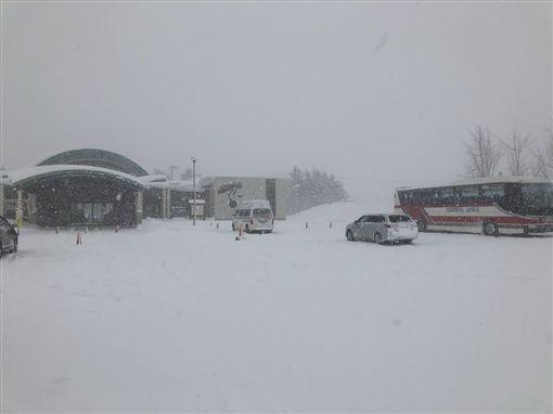 北海道,暴風雪(圖/翻攝自推特)