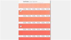 365天生日專屬顏色 翻攝網路 色票