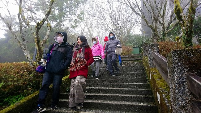 水氣不足 宜蘭太平山未見雪跡