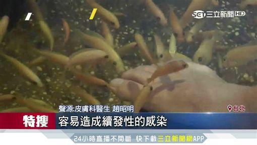 新奇!有觸電的感覺 台灣鯛幫你吃腳腳「馬殺雞」