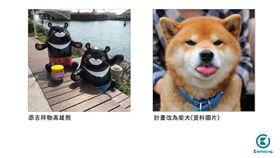 高雄熊,吉祥物,柴犬 圖/翻攝自高雄點臉書