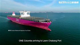 貨櫃輪粉紅塗裝 進港.上路成搶拍焦點
